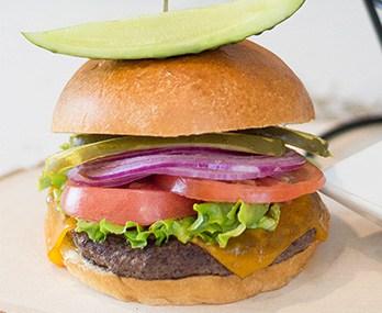 guy harvey grille and grog burger
