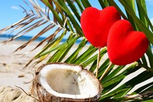 Elopement - coconuts on beach image